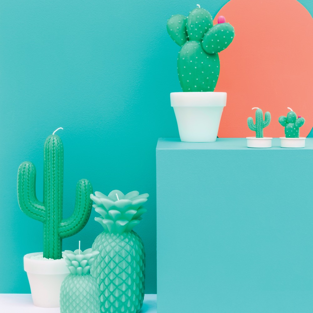 Sunnylife ronde Cactus kaars