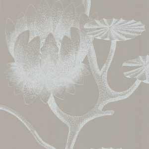Cole and Son behang Lily 3110