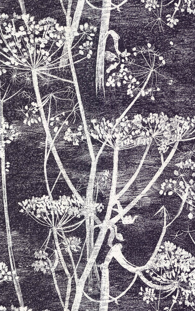 Cole and Son behang Cow Parsley 7046