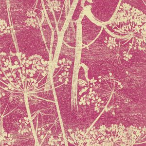 Cole and Son behang Cow Parsley 7052