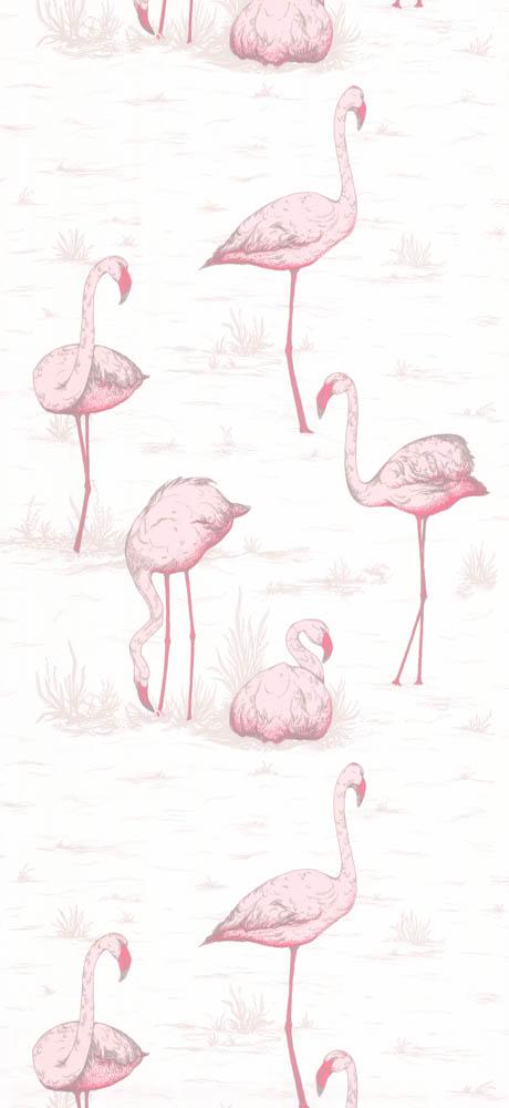 Cole and Son behang Flamingos 8045