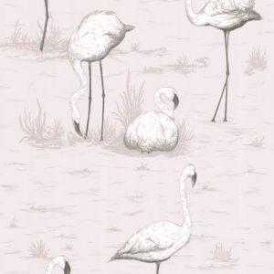 Cole and Son behang Flamingos 8046