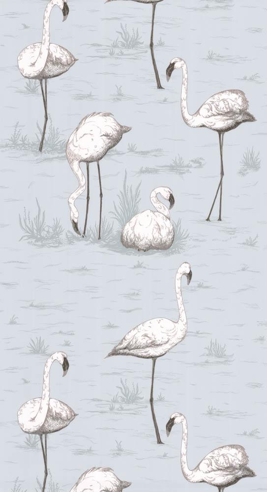 Cole and Son behang Flamingos 8047