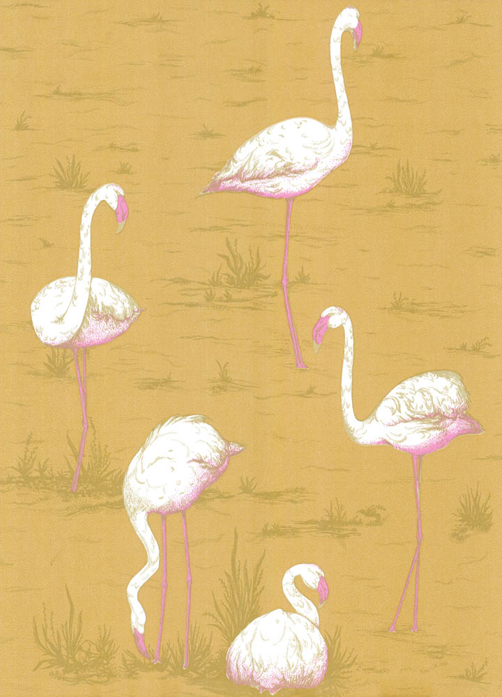 Cole and Son behang Flamingos 6045