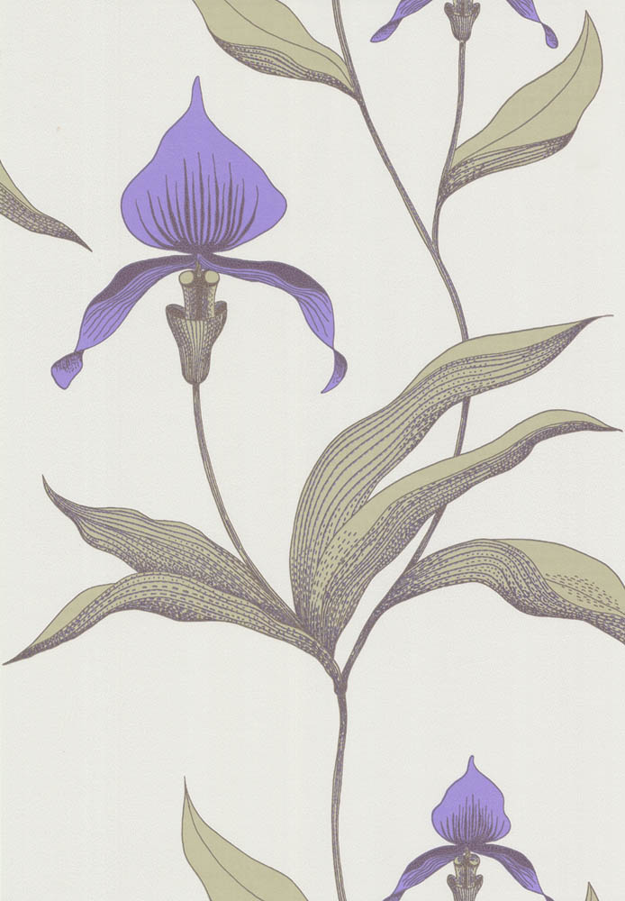 Cole and Son behang Orchid 4024