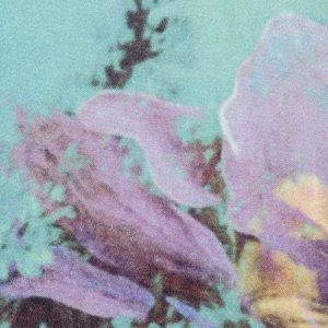Jean Paul Gaultier Home gordijn Brassee Bleuet