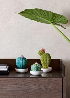 Lladró aroma diffuser Ferocactus Cactus