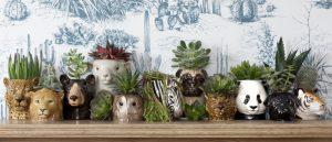 Quail Ceramics eierdopjes Wilde Dieren - set van 3